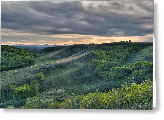 Canadian Foothills Landscape Greeting Cards - Spring Evening In The Foothills Greeting Card by Heather Simonds