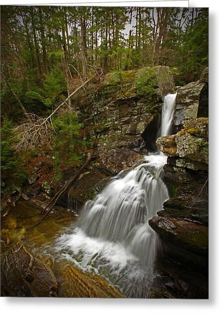 Spring Falls Greeting Card by Karol Livote
