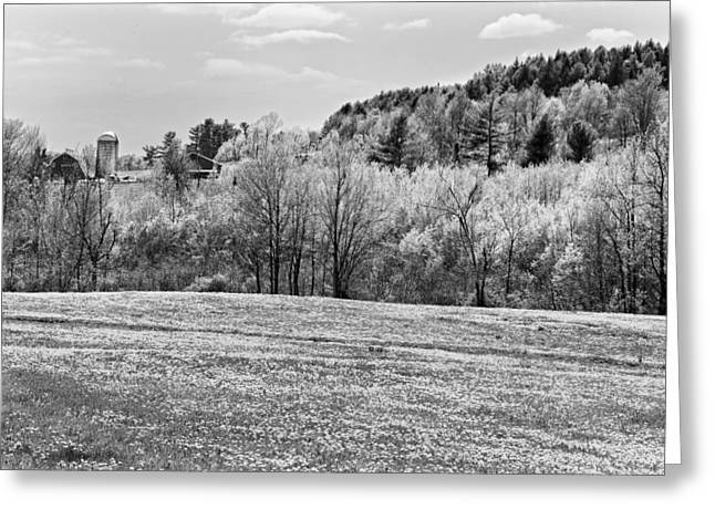 Maine Agriculture Digital Art Greeting Cards - Spring Farm Landscape With Dandelions in Maine Greeting Card by Keith Webber Jr