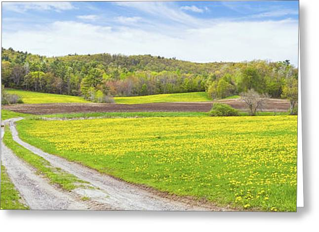 Blooms Greeting Cards - Spring Farm Landscape With Dirt Road And Dandelions Maine Greeting Card by Keith Webber Jr