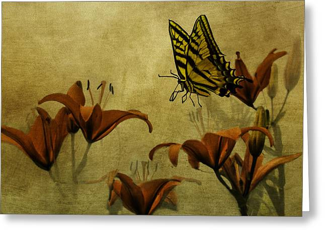 Spring Fever Greeting Card by Diane Schuster