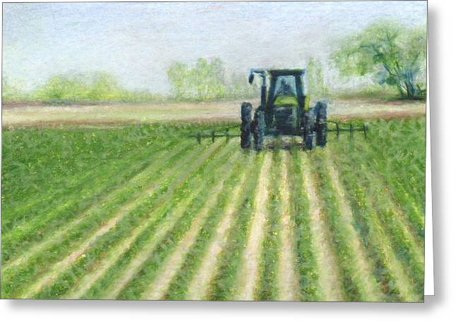 Fresh Green Drawings Greeting Cards - Spring Field Greeting Card by Natasha Denger