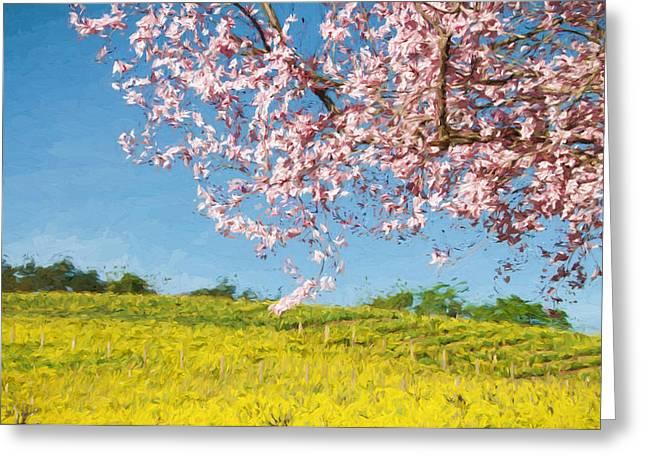 Sonoma County Vineyards. Mixed Media Greeting Cards - Spring Fling Greeting Card by John K Woodruff