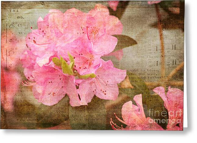 Azalias Greeting Cards - Spring Floral Greeting Card by Arlene Carmel