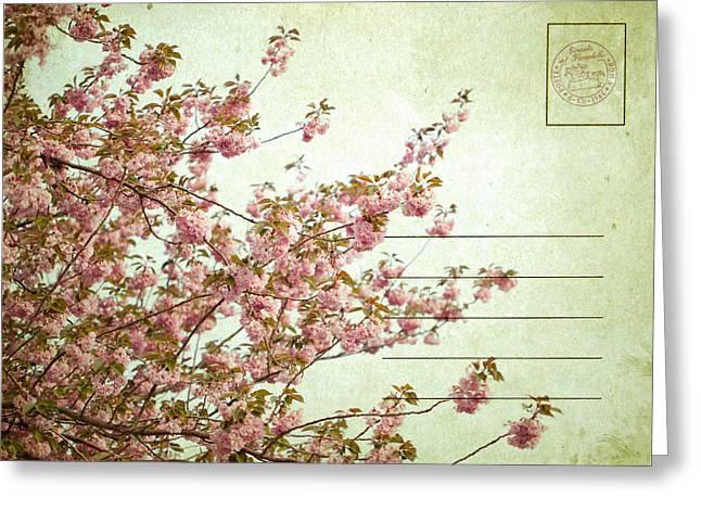 Spring Floral Greeting Card by June Marie Sobrito