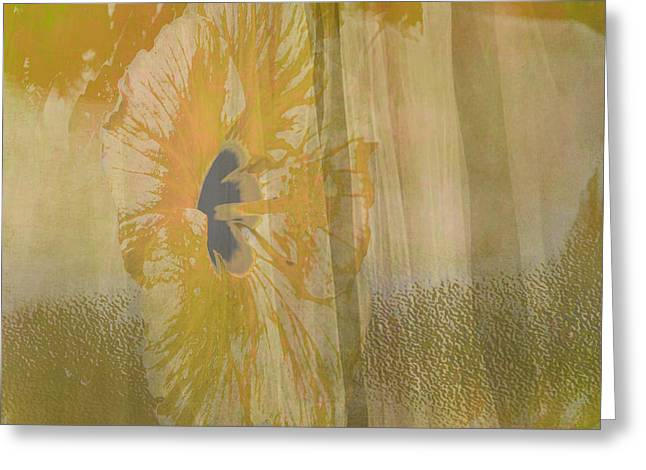 Tangerines Mixed Media Greeting Cards - Spring Flower Unveiling Greeting Card by Beverly Guilliams