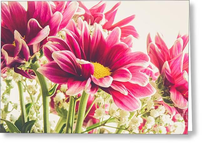 Pink Flower Prints Greeting Cards - Spring Flowers Greeting Card by Lisa Killins
