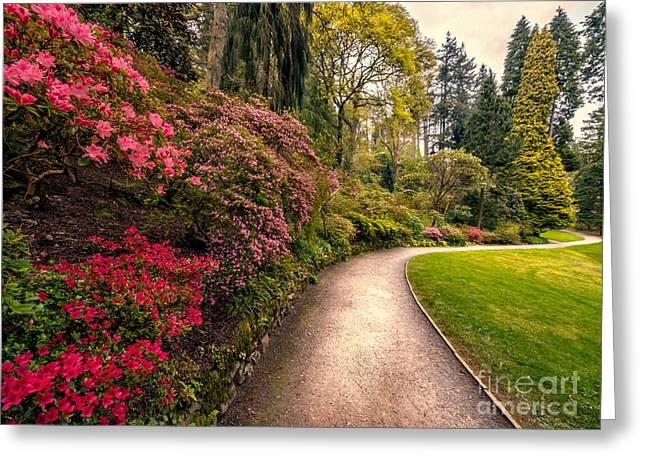 Trail Digital Greeting Cards - Spring Footpath Greeting Card by Adrian Evans