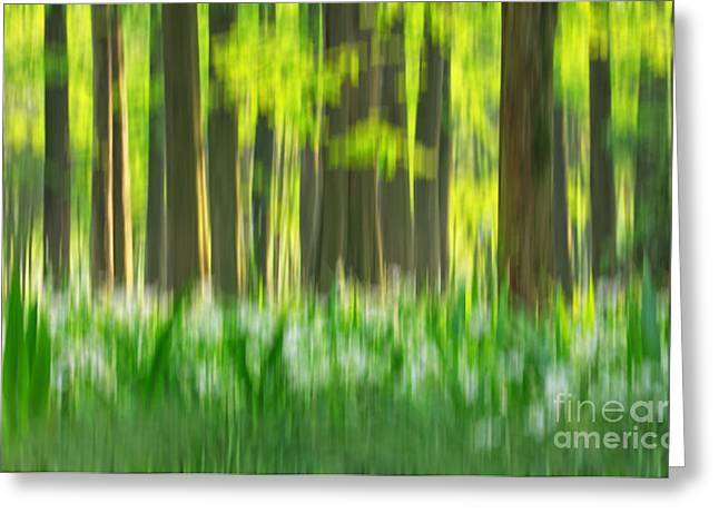 Meadown Greeting Cards - Spring Forest Impression Greeting Card by Charline Xia