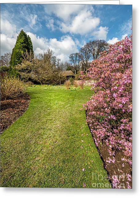 Summer House Greeting Cards - Spring Garden Greeting Card by Adrian Evans