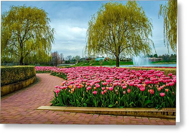 Whipping Greeting Cards - Spring Garden Greeting Card by Julie Palencia