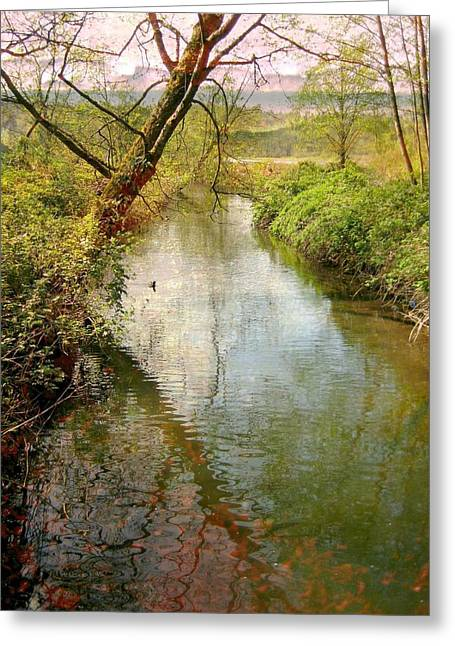 Light Grey Greeting Cards - Spring Happening Greeting Card by Shirley Sirois
