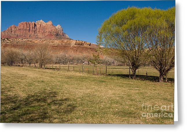 Geobob Greeting Cards - Spring has Arrived in Rockville Utah Greeting Card by Robert Ford