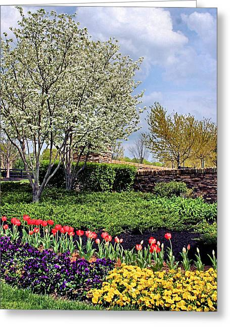 Ground Cover Greeting Cards - Spring Has Sprung Greeting Card by Kristin Elmquist