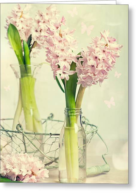 Spring Hyacinths Greeting Card by Amanda And Christopher Elwell