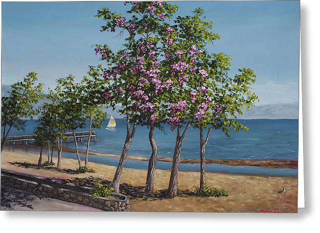 Spring In Kings Beach Lake Tahoe Greeting Card by Darice Machel McGuire