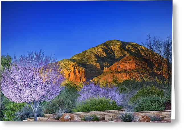 Red Rock Crossing Greeting Cards - Spring in Sedona Arizona Greeting Card by Jodi Jacobson