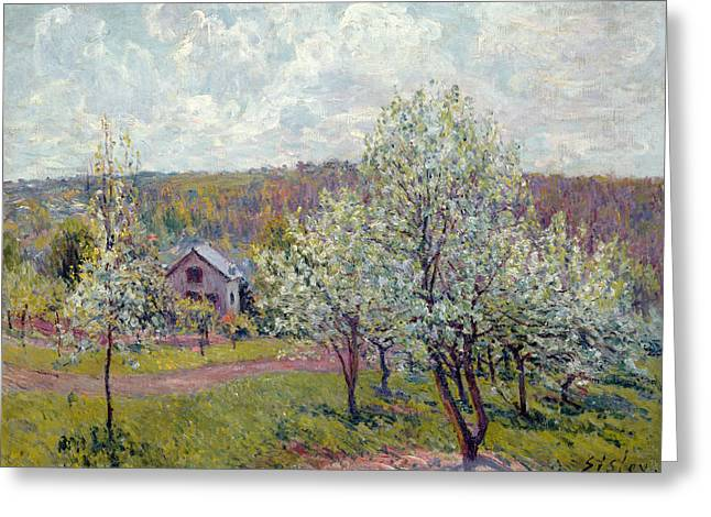 Ile De France Greeting Cards - Spring In The Environs Of Paris, Apple Blossom, 1879 Oil On Canvas Greeting Card by Alfred Sisley