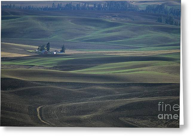 Spokane Greeting Cards - Spring in the Palouse Greeting Card by Sharon Elliott
