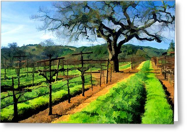 Spring In The Vineyard Greeting Card by Elaine Plesser