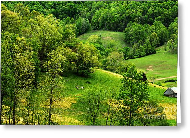 Spring In West Virginia Greeting Card by Thomas R Fletcher