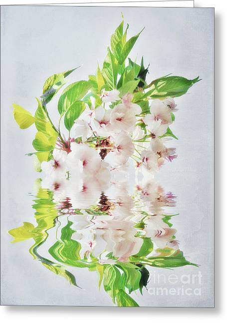Cherry Blossoms Mixed Media Greeting Cards - Spring Inspiration Greeting Card by Angela Doelling AD DESIGN Photo and PhotoArt
