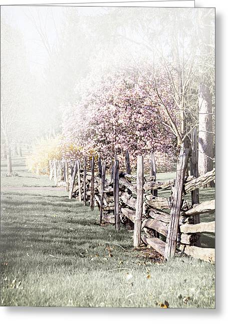 Wooden Fence Greeting Cards - Spring landscape with fence Greeting Card by Elena Elisseeva