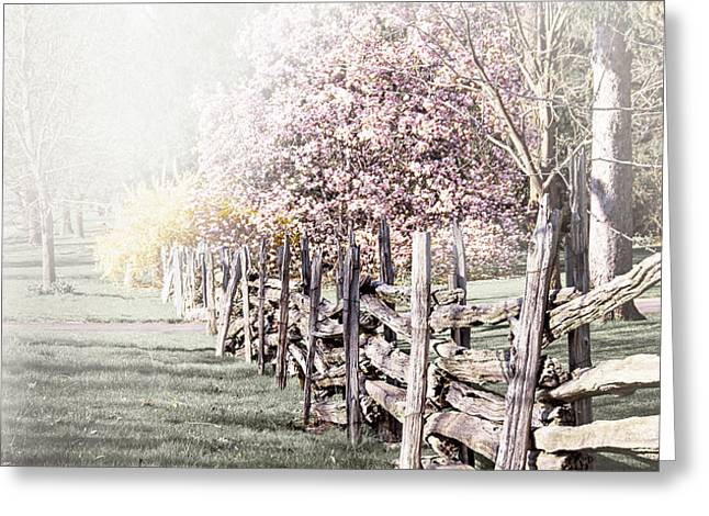 Spring landscape with fence Greeting Card by Elena Elisseeva