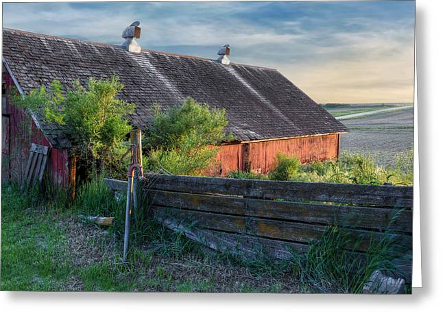 Red Roofed Barn Greeting Cards - Spring Light Greeting Card by Nikolyn McDonald