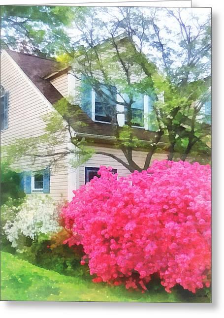 Suburban Greeting Cards - Spring - Magenta Azalea Garden Greeting Card by Susan Savad