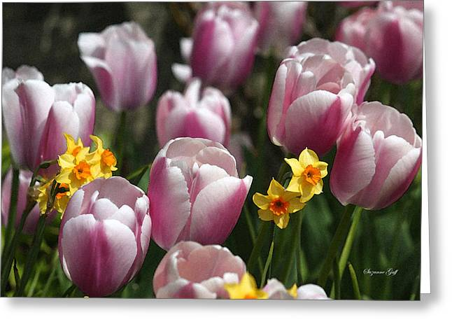 Spring Bulbs Digital Art Greeting Cards - Spring Mix II in Watercolor Greeting Card by Suzanne Gaff