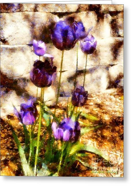 Indigo Blue Violet Greeting Cards - Spring morning Tulips Greeting Card by Janine Riley