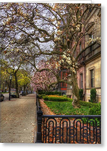 Spring Scenes Photographs Greeting Cards - Spring on Commonwealth Avenue - Boston Greeting Card by Joann Vitali
