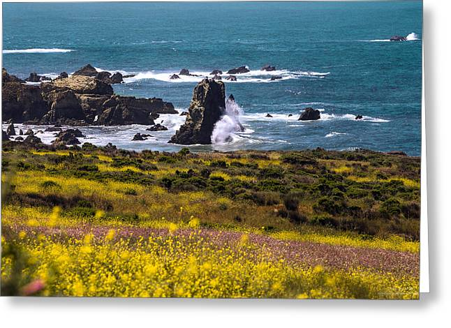 Big Sur Ca Greeting Cards - Spring on the California Coast By Denise Dube Greeting Card by Denise Dube
