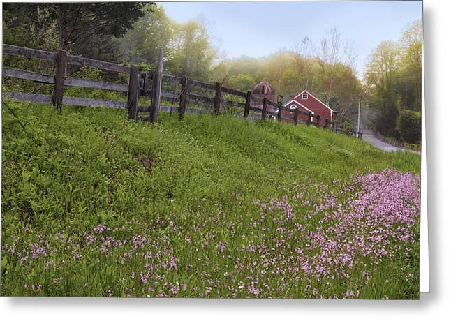 Spring on the farm Greeting Card by Bill  Wakeley