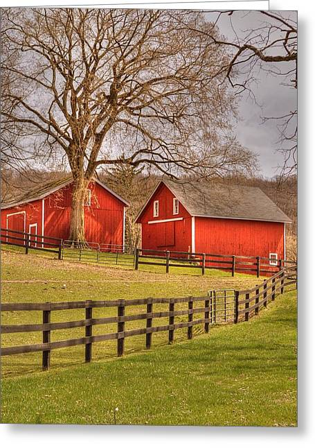 Barn Door Greeting Cards - Spring on the farm Greeting Card by Linda Covino