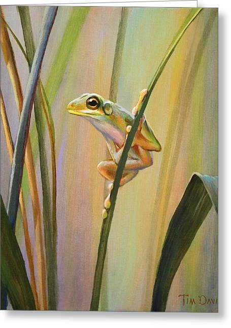 Spring Peeper Greeting Card by Tim Davis