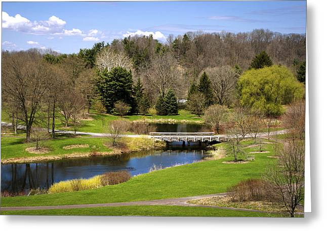 Spring Pond Landscape Greeting Card by Christina Rollo