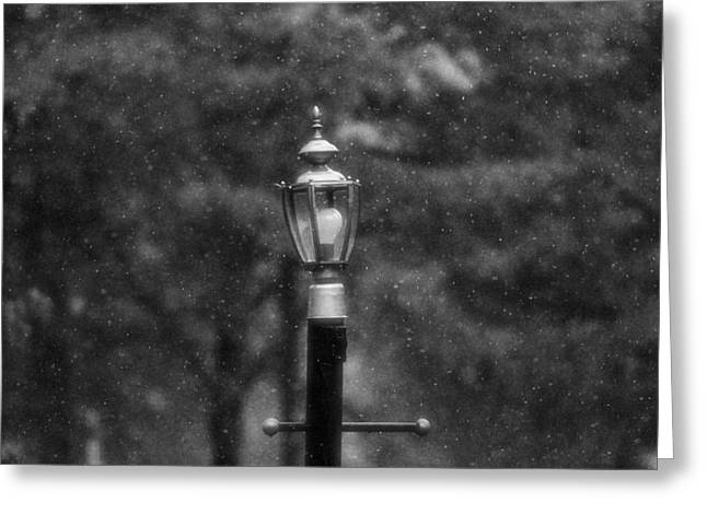 Streetlight Greeting Cards - Spring Rain In Black And White Greeting Card by Dan Sproul
