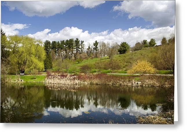 Ithaca Greeting Cards - Spring Reflection Landscape Greeting Card by Christina Rollo