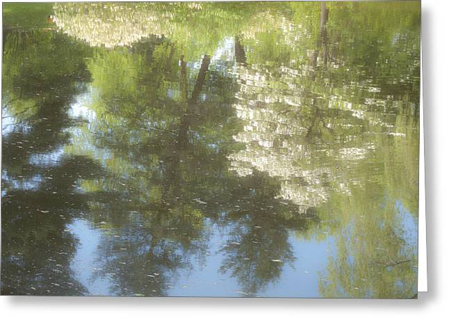 Auburn Ma Greeting Cards - Spring Reflections Greeting Card by Bucko Productions Photography