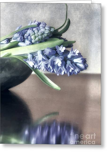 Foliage Fragrance Greeting Cards - Spring Reflections Greeting Card by Darren Fisher