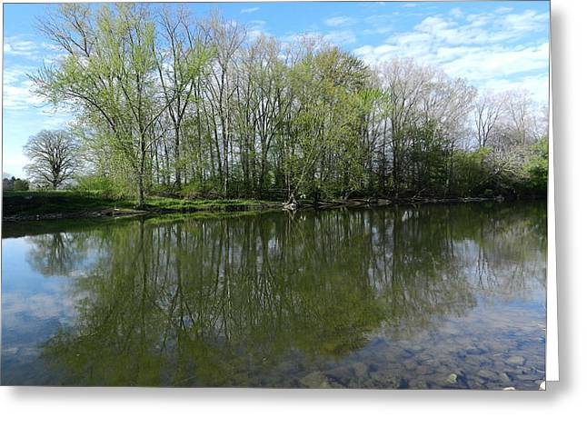 Reflections Of Trees In River Greeting Cards - Spring Reflections in the Thames River Greeting Card by Melissa Rensen