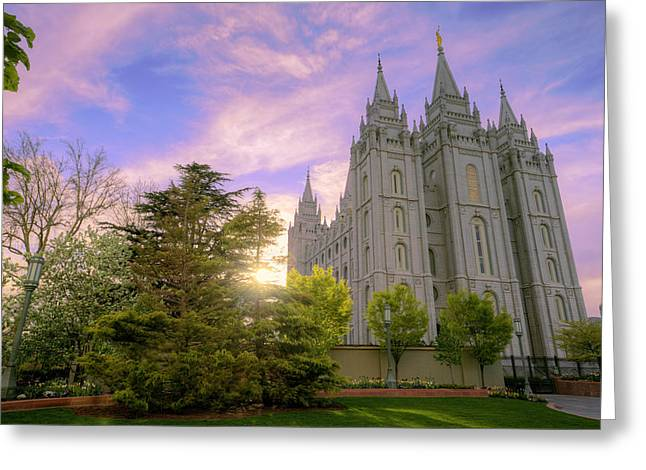 Salt Lake City - Utah Greeting Cards - Spring Rest Greeting Card by Chad Dutson