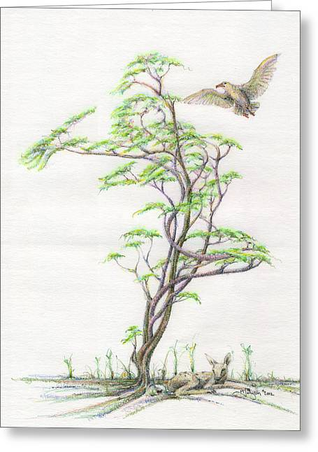 Gaia Drawings Greeting Cards - Spring Rising Greeting Card by Mark Johnson