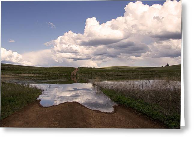 Overruns Photographs Greeting Cards - Spring Roads Greeting Card by Kathy Bassett