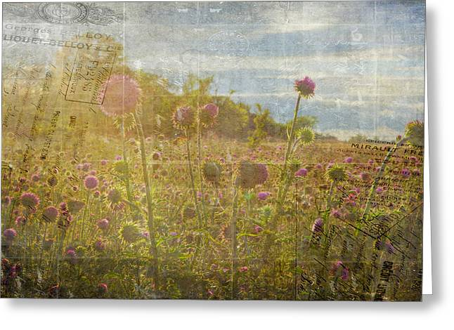 Spring Romance Greeting Card by Toni Hopper