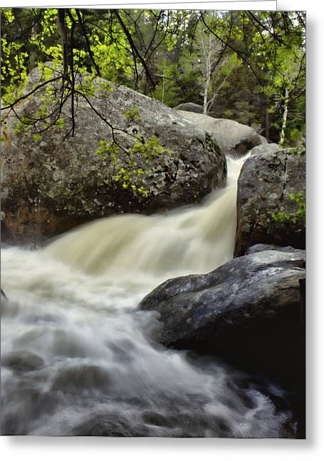 Stream Digital Art Greeting Cards - Spring Runoff Greeting Card by Ellen Heaverlo