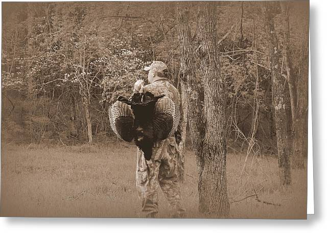 Spring Gobbler. Greeting Cards - Spring Season Greeting Card by Todd Hostetter
