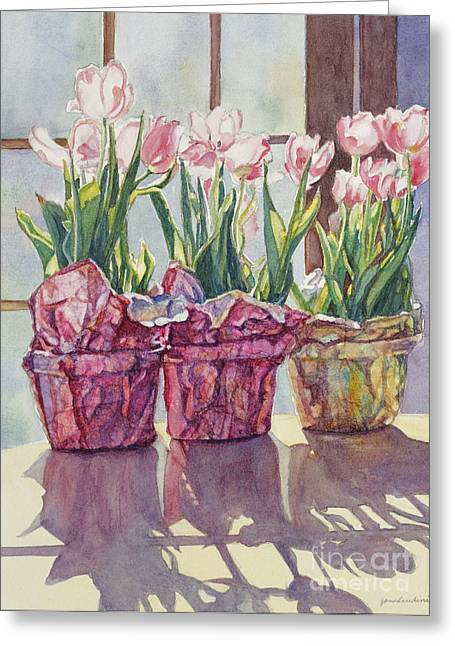 Sunlight On Pots Greeting Cards - Spring Shadows Greeting Card by Jan Landini